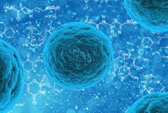 Immuno-Boost: Fitnesstraining für dein Immunsystem